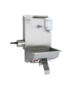 Wash trough and steriliser